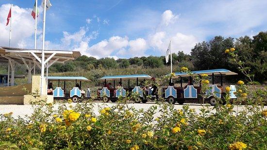 Club Marmara Cala Regina : Le petit train