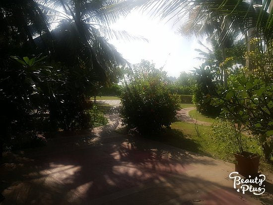 Hulhule Island: TA_IMG_20171019_153508_large.jpg