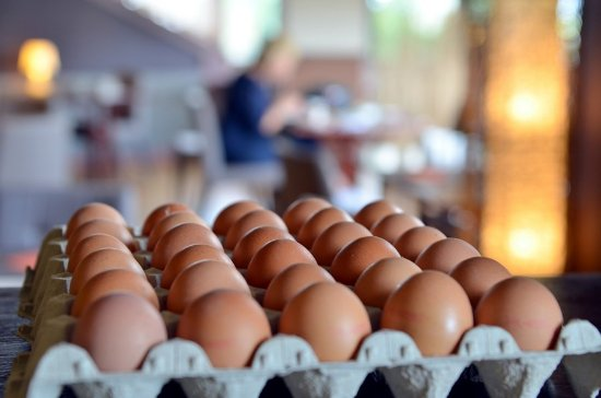 Libramont, Βέλγιο: Petit déjeuner - oeufs frais