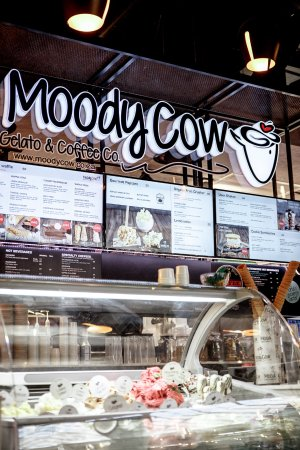 ‪Moody Cow Gelato & Coffee Co‬