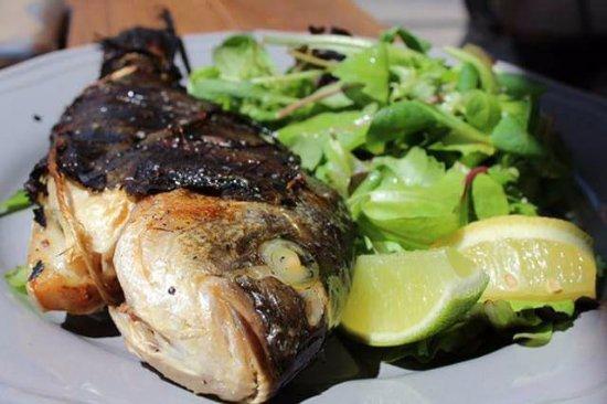 Seafood fest v Bistro rambus