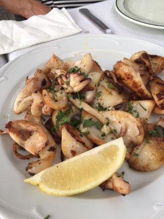 Tamariu, Espanha: cuttlefish