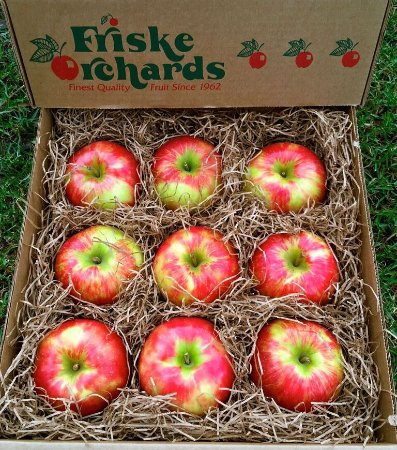 Ellsworth, MI: HONEYCRISP apple gifts galore!