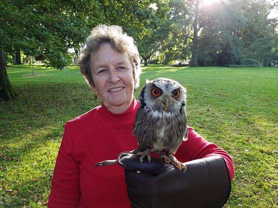 Thomastown, Irlanda: Maggie the Owl.