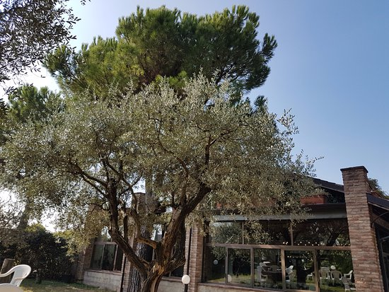 Cascina Capuzza - Selva Capuzza : Esterno del ristorante