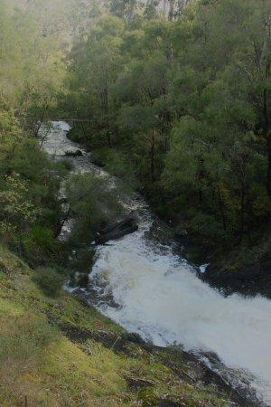 Pemberton, Australien: View of Beedelup Falls from observation deck