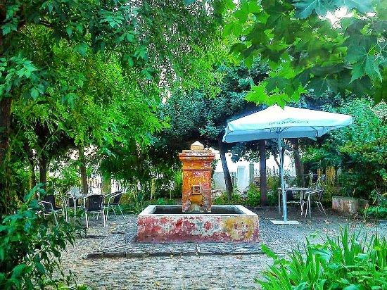 El Jardin del Mirador: la fuente