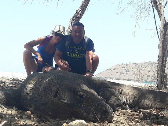 Jimbaran, Indonesia: Na Komodo :)