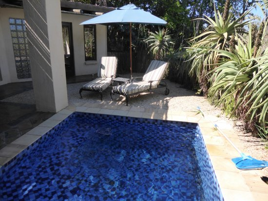 Addo, Sudáfrica: Kleiner Pool der zur Suite gehört