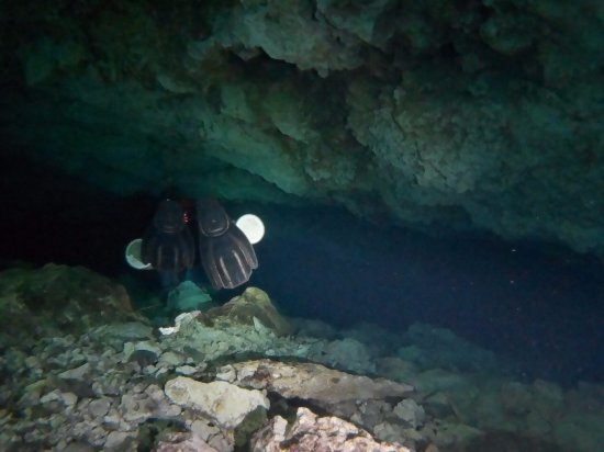 Dripstone Diving