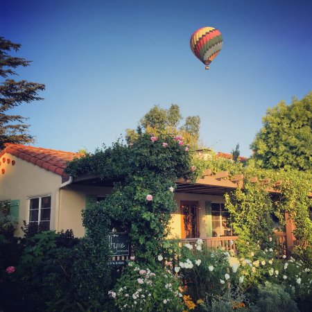 Rancho Santa Fe, CA: A beautiful day at Thyme in the Ranch