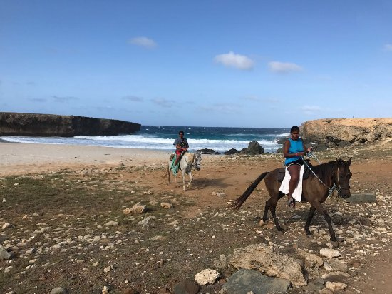 Santa Cruz, Aruba: Thanks for choosing to ride with us!