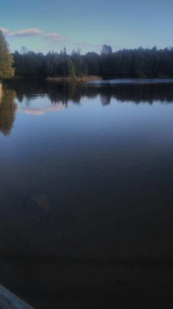 Durham, แคนาดา: McGowan Falls