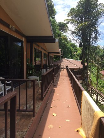 The Hill Resort: photo4.jpg