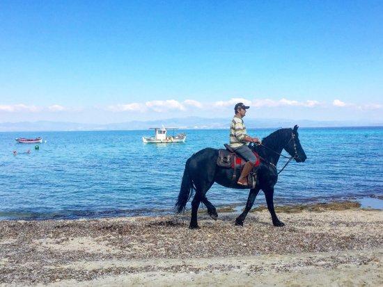 Afytos Beach: photo0.jpg