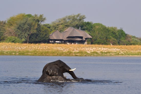 Caprivi Region, Namibia: Looking back to the hotel.
