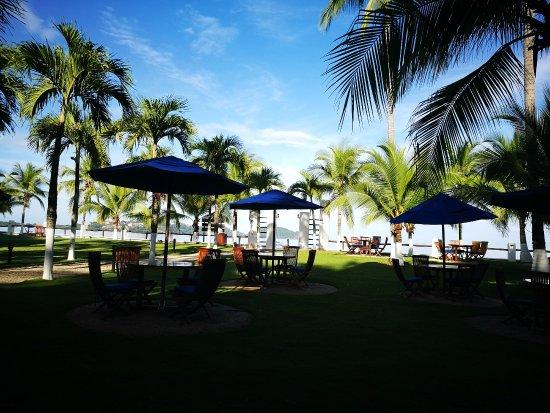 Bahia del Sol Beach Front Boutique Hotel: Jardin