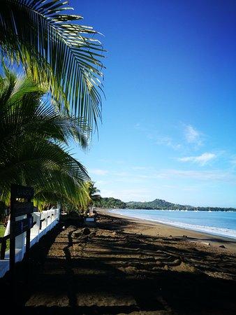 Bahia del Sol Beach Front Boutique Hotel: Jardin del hotel justo frente a la playa