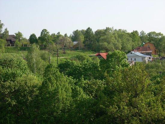 Бёховское кладбище: Вид на деревню Бехово