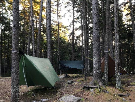 Blackwoods Campground: photo2.jpg