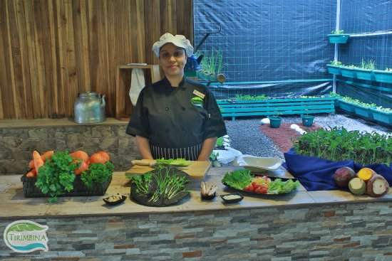 """Province of Heredia, Kosta Rika: Our restaurant """"El Ceibo"""" where we prepare very fresh salads. From the farm to the table."""
