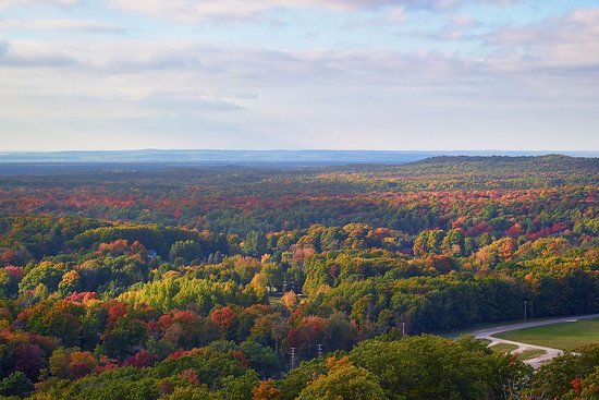 Across the Manistee National Forest, just west of Cadillac