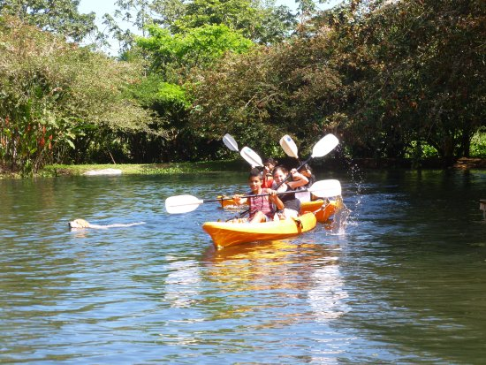 El Castillo, Costa Rica: Kids, dogs and kayaks....free for the enjoying on our little lake. Come play!