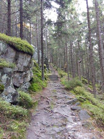 Kudowa Zdrój, Polska: Stolowe Mountain National Park