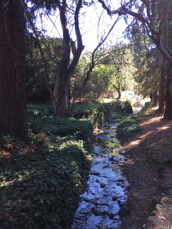 University of California, Berkeley: Strawberry Creeks runs through campus