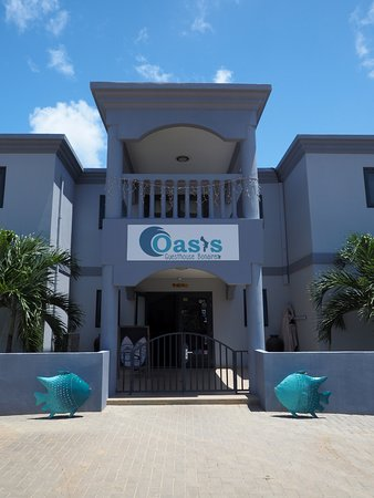 Oasis Guesthouse Foto