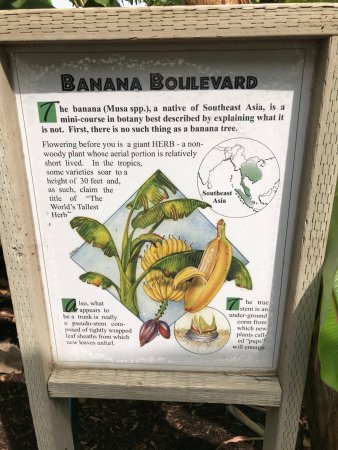 Encinitas, CA: Good signage before Banana Boulevard (ref next pic)