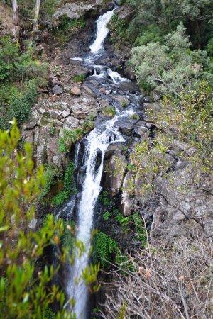 Killarney, Australia: Queen Mary Falls