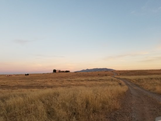 Elgin, AZ: Access road to Rancho Milagro
