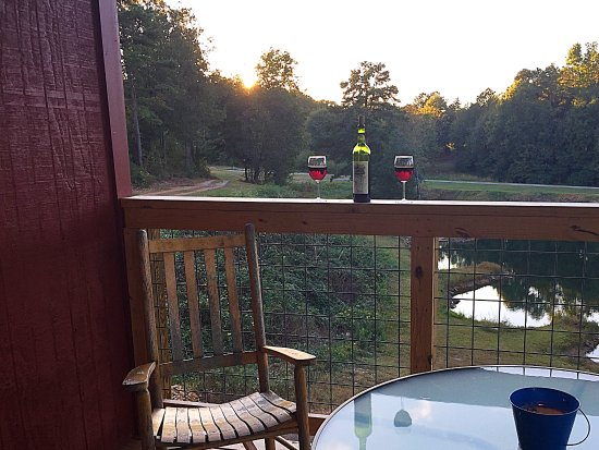 Treehouse Vineyards: The porch