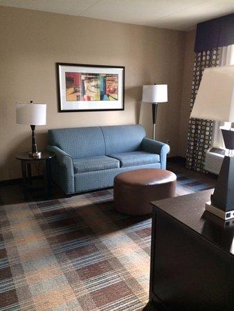 Clarksville, TN: Living area of my room (suite)
