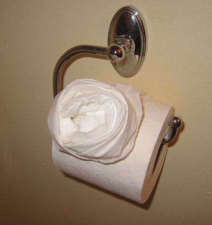 Half Moon Bay Inn : Toilet tissue rose!