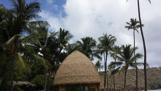 하나우마 베이 자연 보호 구역 사진