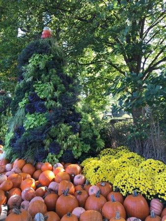 Morton Arboretum: photo1.jpg