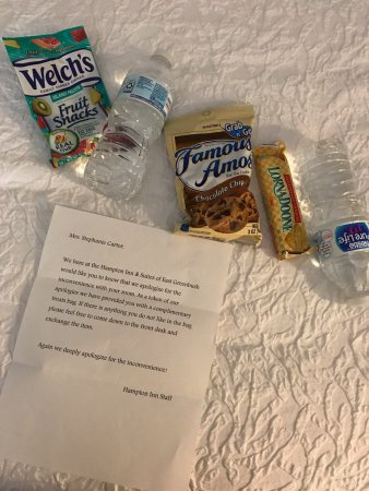 East Greenbush, Nova York: Surprise left in my room when they had to switch my room for the second night.