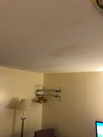 Econo Lodge Inn & Suites Denver: photo1.jpg