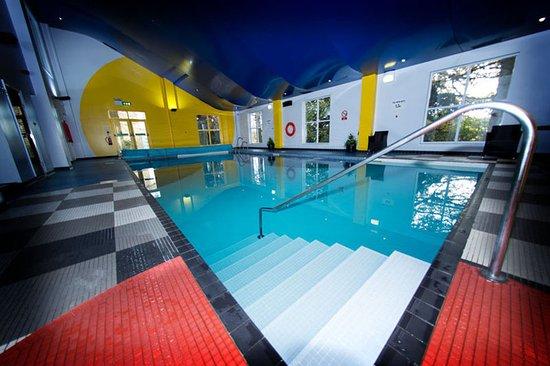 Ringwood Hall Hotel: Pool