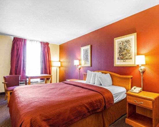 Millington, TN: Guest Room