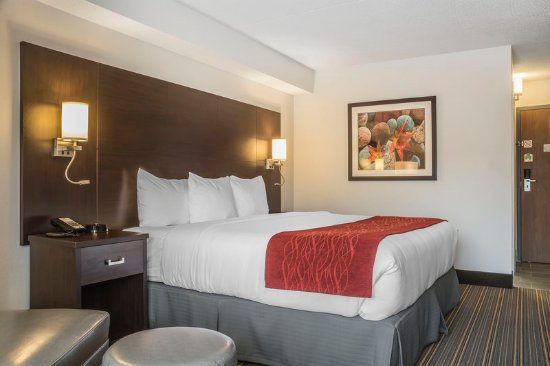 Leamington, Canada: Guest room