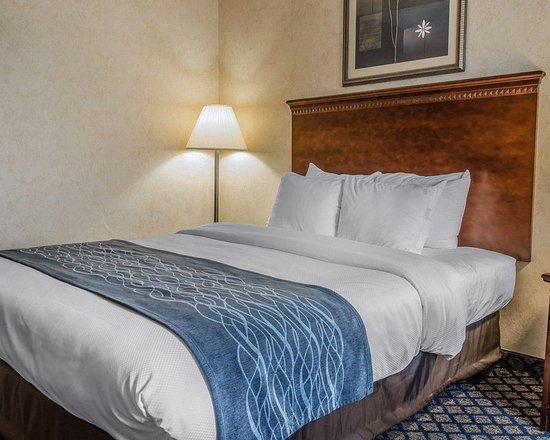 โคลด์วอเตอร์, มิชิแกน: Guest Room