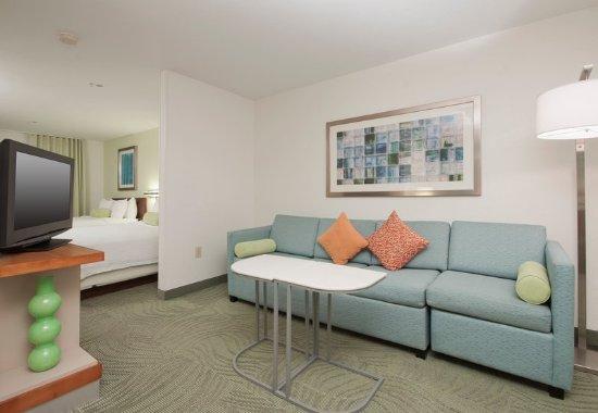 แชนด์เลอร์, อาริโซน่า: Queen/Queen Suite Living Area