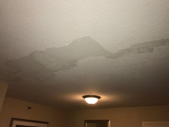 Radisson Suite Hotel Oceanfront: Exposed, unfinished drywall that had obviously suffered water damage.