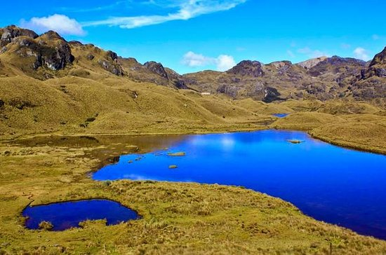 Shared Cajas National Park and Cuenca...