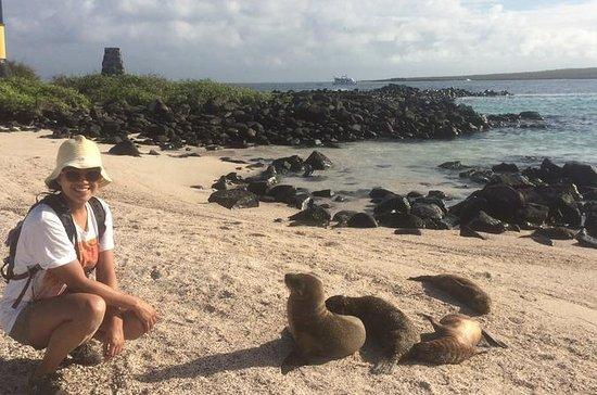8-dages tur i Galapagos og Quito...