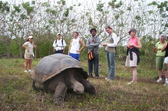 7-Day Tour of Galapagos and Quito...