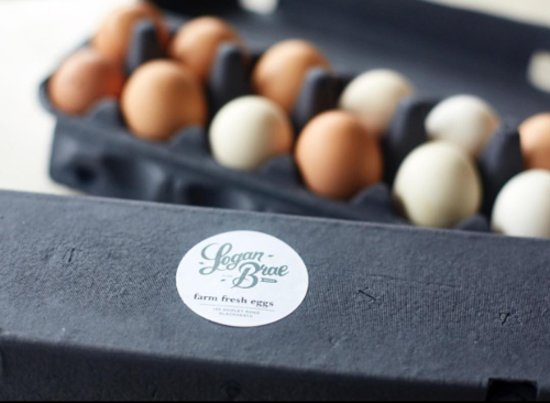 Blackheath, Australia: our freerange eggs